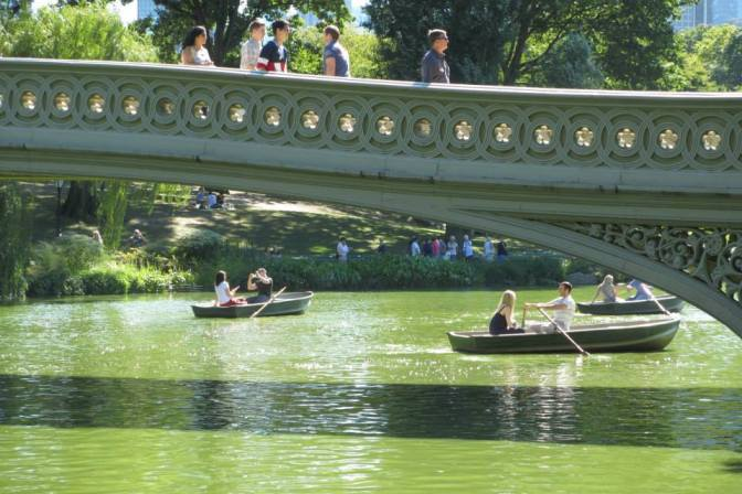 Row Your boat in Central Park
