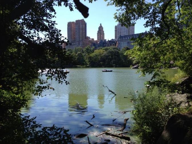 Un tour de barque dans Central Park